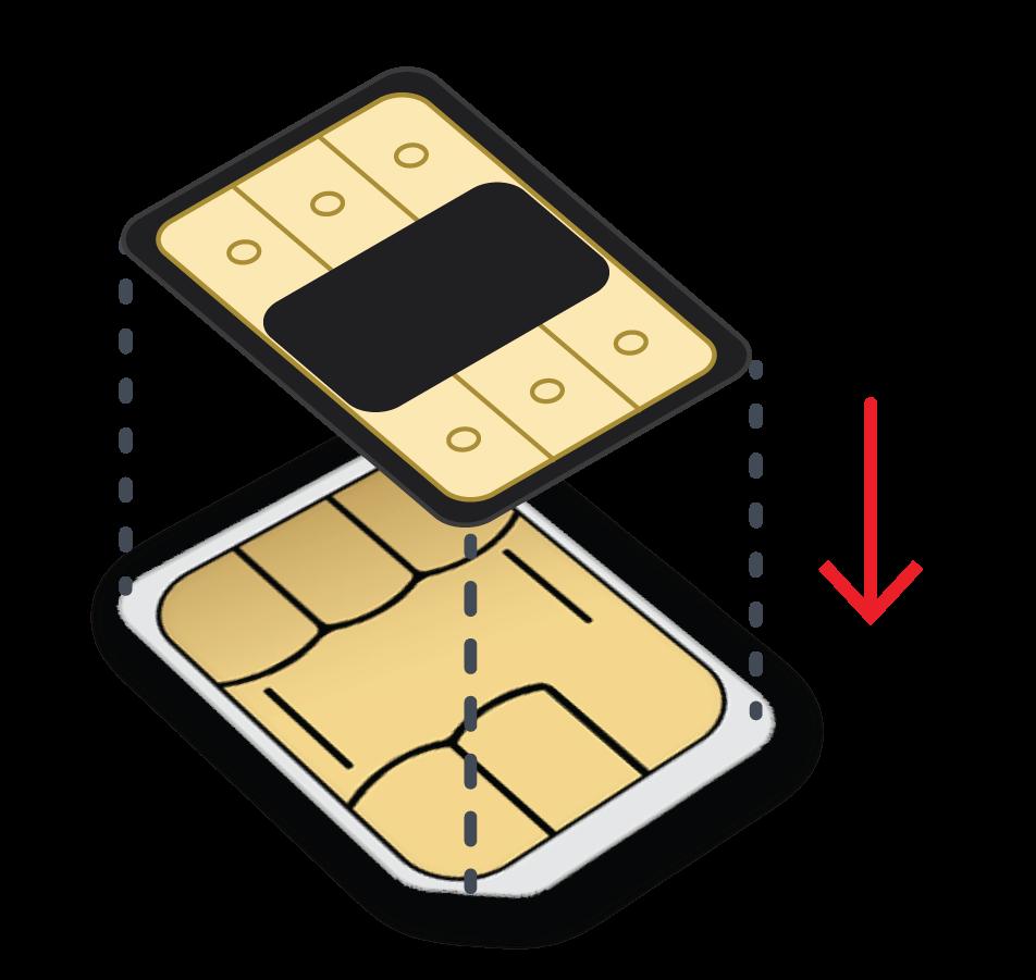Flexiroam X - Microchip