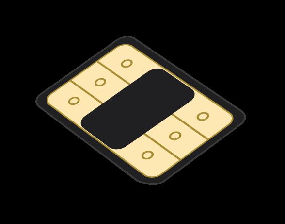 Flexiroam X Microchip